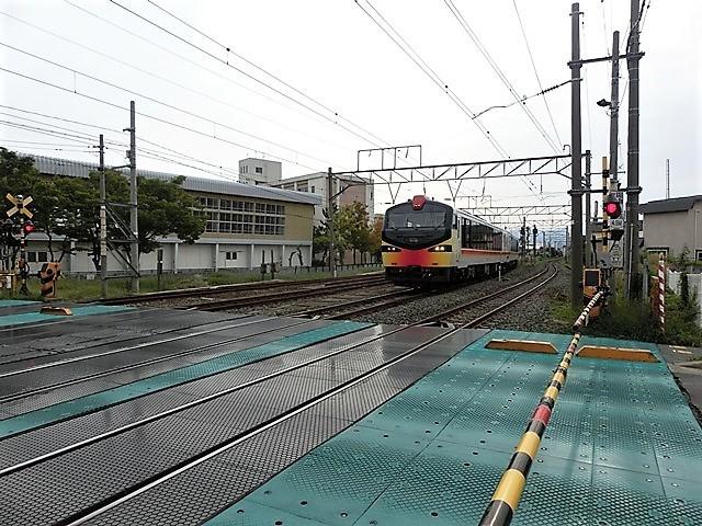 藤田八束の鉄道写真@青森で見つけた花園と貨物列車絶好のコラボトライアングル地帯・・・トライアングル地帯の鉄道写真_d0181492_23415226.jpg