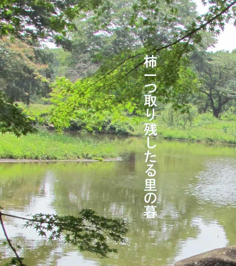 f0117041_06171258.jpg