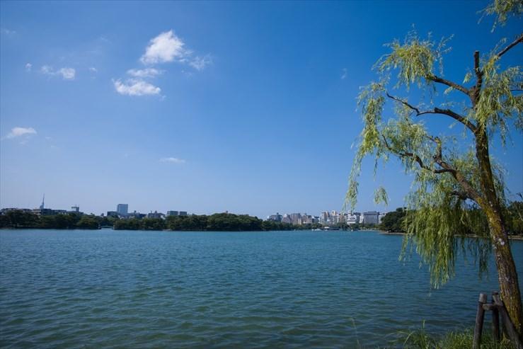 福岡旅行 舞鶴公園と大濠公園_e0170058_19270078.jpg