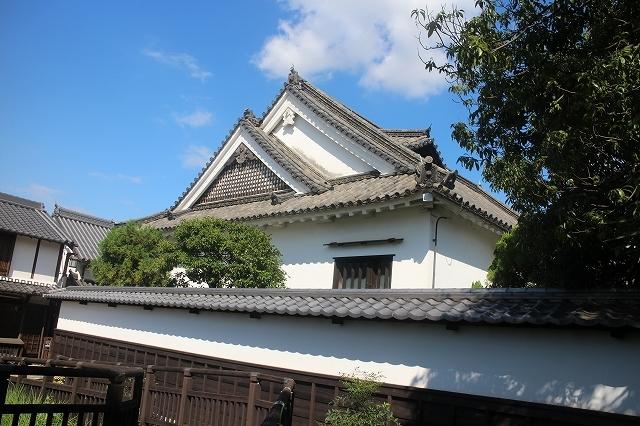 本薬師寺のホテイアオイと今井町ウオーク_b0044663_10171927.jpg