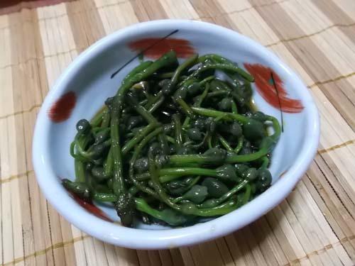 具だくさんの芋煮&山菜ミズの実_f0019498_20192575.jpg
