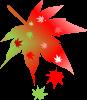 のんちゃん、酷暑の顔から秋の顔へ_f0242002_19564056.png