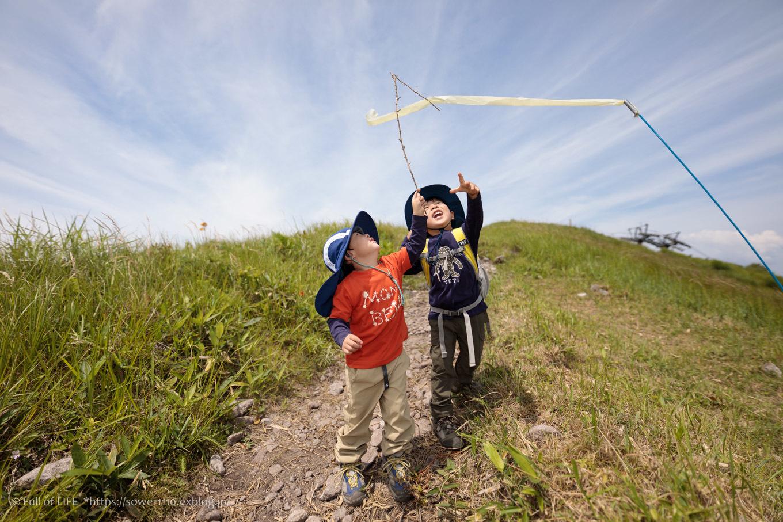 夏の草原広がる稜線トレッキング「八子ヶ峰」西峰~帰路へ_c0369219_16400020.jpg