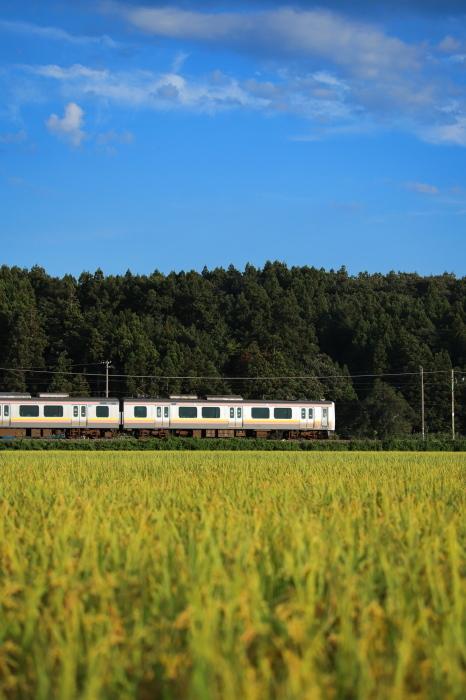 初秋の列車_e0169421_20272908.jpg