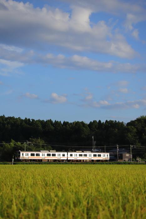 初秋の列車_e0169421_20272982.jpg