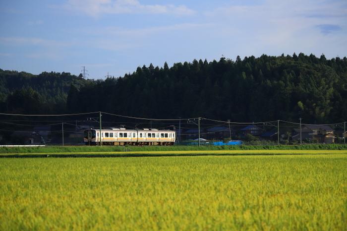 初秋の列車_e0169421_20273099.jpg
