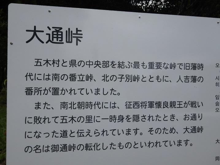 仰烏帽子山のシモバシラ_e0164643_10445710.jpg