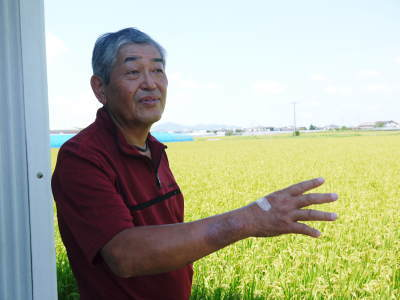 健康農園さんの無農薬栽培『雑穀米』『発芽玄米』売れてます!平成30年度の稲刈りはまもなくです!_a0254656_17412832.jpg