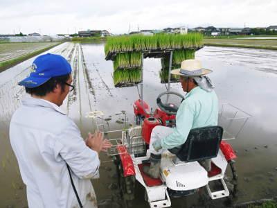 健康農園さんの無農薬栽培『雑穀米』『発芽玄米』売れてます!平成30年度の稲刈りはまもなくです!_a0254656_18024435.jpg