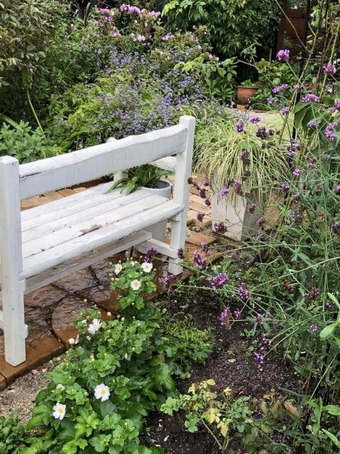 9月の庭「ヤブランと水引草など」_a0243064_16570200.jpg