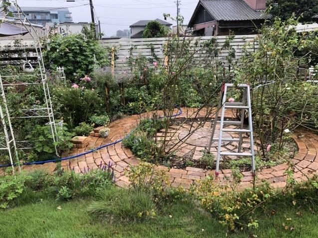 9月の庭「ヤブランと水引草など」_a0243064_16583548.jpg
