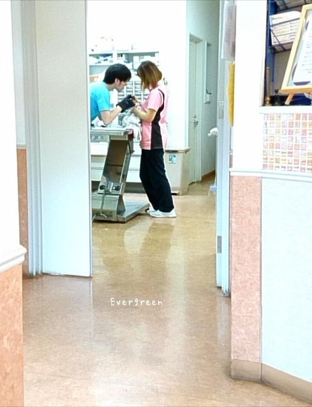 8/7(火)    夏やすみ日記【2】 ~みかん歯磨き*コインの裏表~_d0362666_13114448.jpg