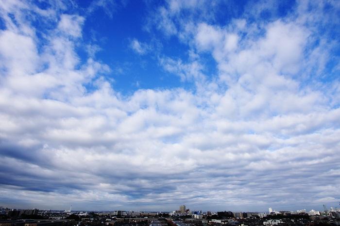 塔状雲(高積雲) : 日々の風景