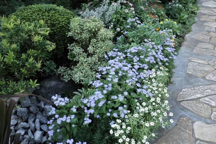 綺麗な庭を。。。ランチで楽しむ_d0150720_18020073.jpg