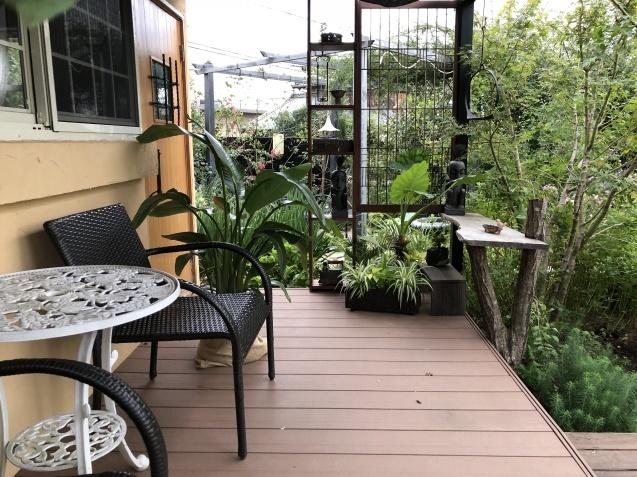 ガーデンハウス前のグリーンと新しいバラの苗_a0243064_22481404.jpg