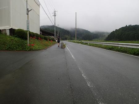 東京へ帰りました!_a0026295_1665182.jpg