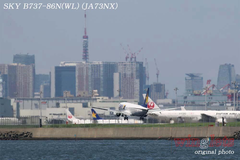 '18年 川崎・浮嶋公園レポート ・・・ SKY/JA73NX_f0352866_22225479.jpg