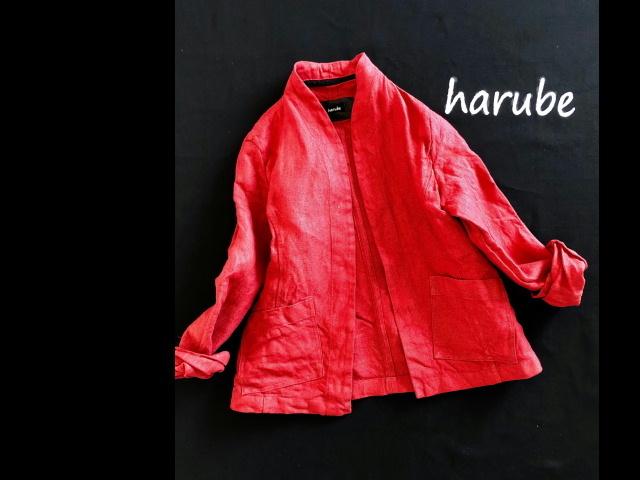 赤のジャケット_a0152283_08472852.jpg