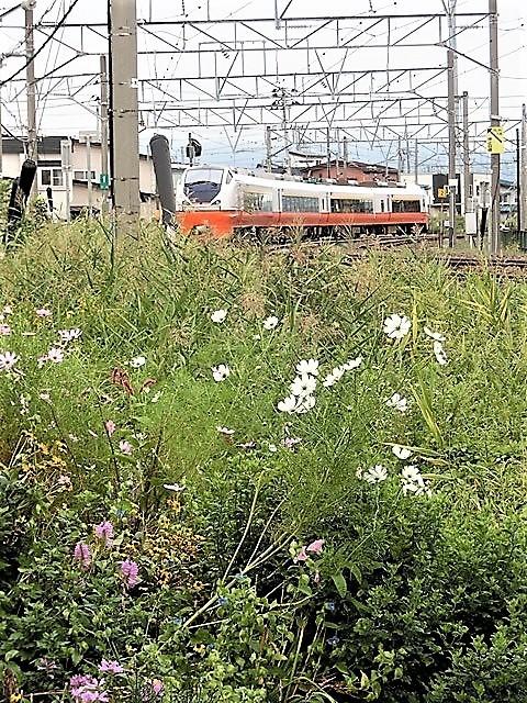 藤田八束の鉄道写真@貨物列車、リゾート列車のを激写、美しい日本そして鉄道写真を追っかける・・・青森トライアングル_d0181492_22020171.jpg