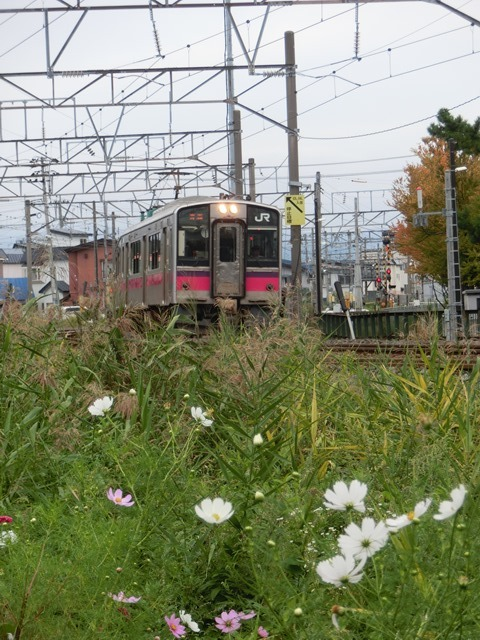 藤田八束の鉄道写真@貨物列車、リゾート列車のを激写、美しい日本そして鉄道写真を追っかける・・・青森トライアングル_d0181492_22050613.jpg