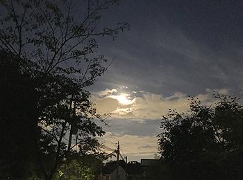 夕刻の散歩_e0103024_10273192.jpg