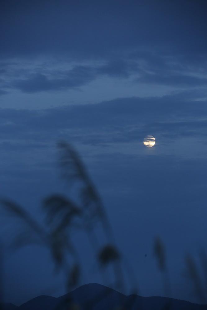 中秋の名月イブ_c0111229_18441851.jpg
