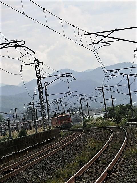 藤田八束の鉄道写真@青い森鉄道と貨物列車の激写・・・貨物列車レッドサンダーと金太郎はかっこいい!!_d0181492_21342146.jpg