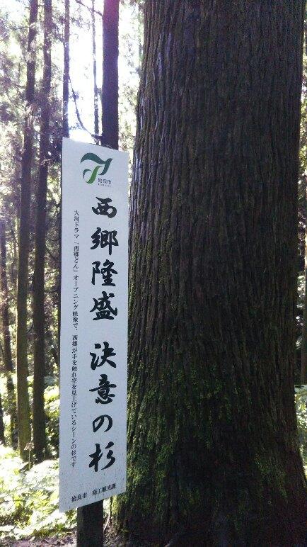JR九州ウオーキングat加治木_e0184224_14010279.jpg