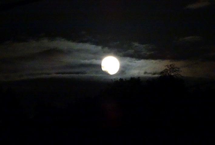 今夜は中秋の名月_b0145257_20205312.jpg