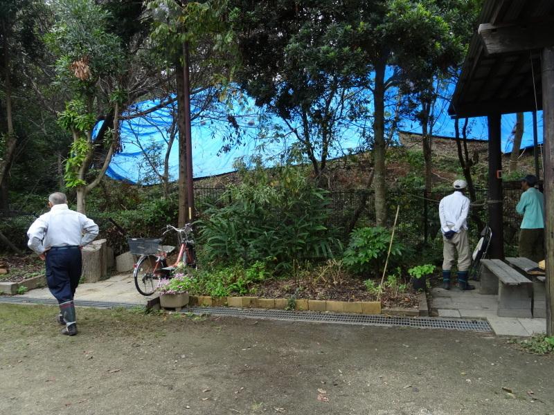 「阪南ボーイスカウト第1団」・・・うみべの森に巣箱設置_c0108460_18225693.jpg