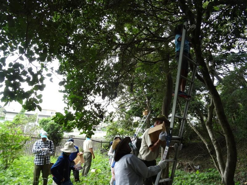 「阪南ボーイスカウト第1団」・・・うみべの森に巣箱設置_c0108460_18275418.jpg