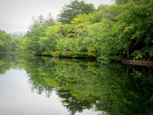 ③初秋の軽井沢をご案内 * 染まり始めた雲場池をお散歩♪_f0236260_05382535.jpg