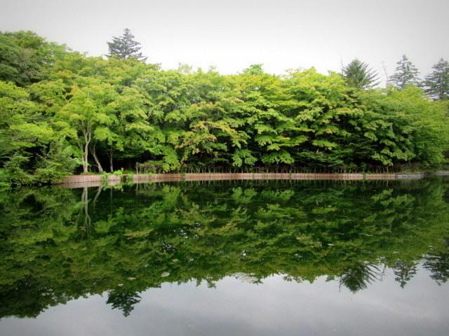 ③初秋の軽井沢をご案内 * 染まり始めた雲場池をお散歩♪_f0236260_05390014.jpg