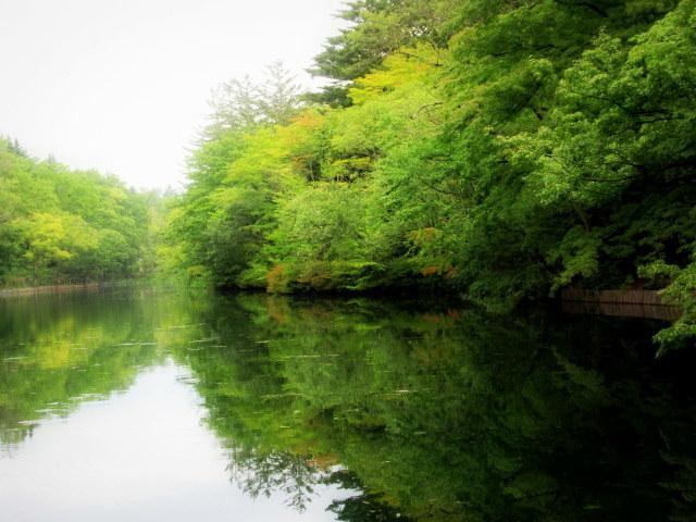 ③初秋の軽井沢をご案内 * 染まり始めた雲場池をお散歩♪_f0236260_05451175.jpg
