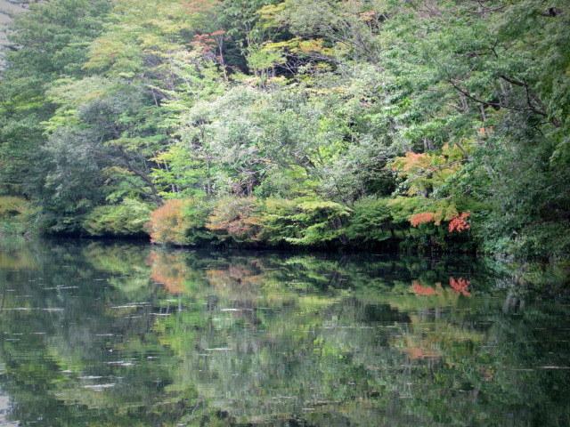 ③初秋の軽井沢をご案内 * 染まり始めた雲場池をお散歩♪_f0236260_05455228.jpg