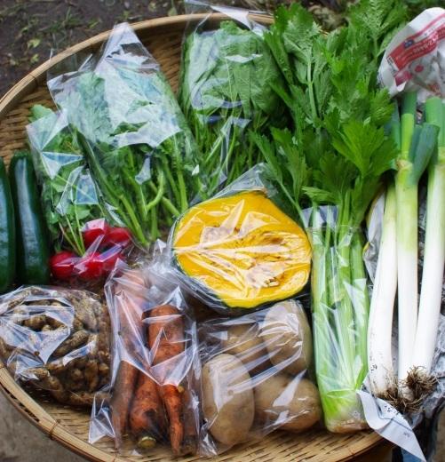 今週の野菜セット(9/25~9/29着)_c0110869_13284118.jpg
