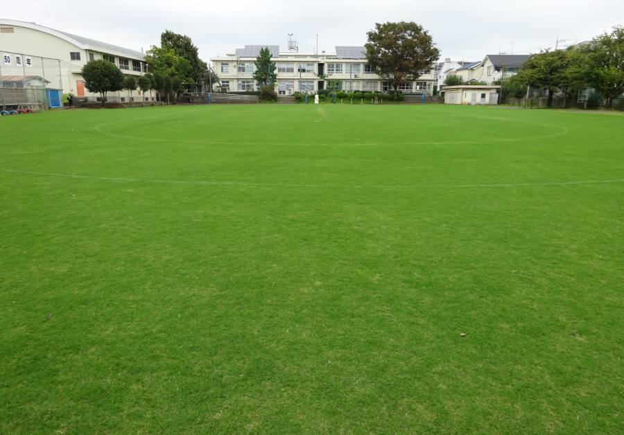 13小校庭芝刈り_f0059673_18541964.jpg