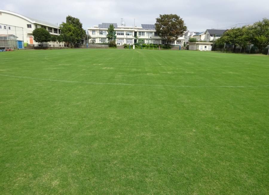 13小校庭芝刈り_f0059673_18543591.jpg