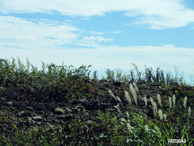 「狩」40周年記念 蔵王バスツアー いよいよお釜へ_f0071480_14543876.jpg