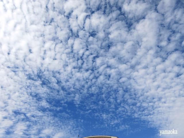 「狩」40周年記念 蔵王バスツアー いよいよお釜へ_f0071480_14560776.jpg