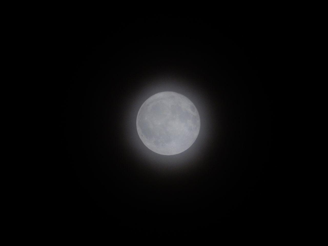満月はおぼろ月_c0025115_21241279.jpg