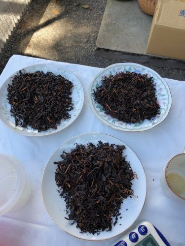 丸子紅茶作り体験_b0158721_06552964.jpg