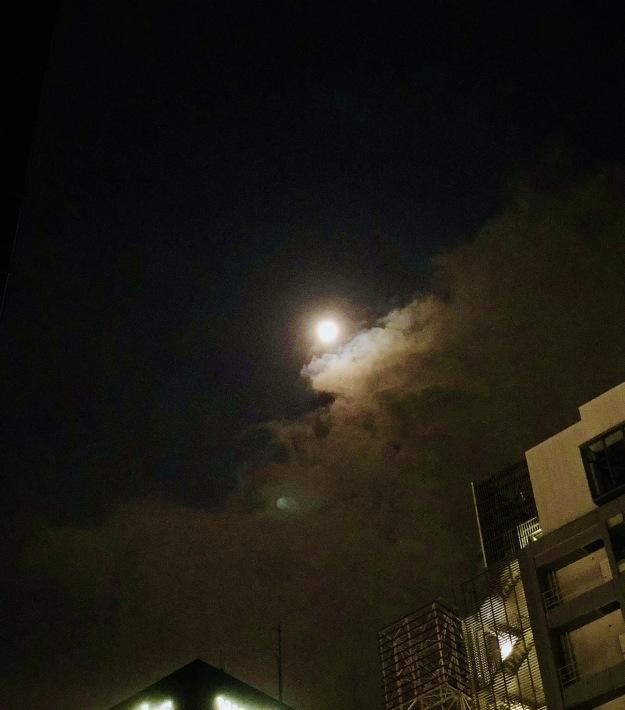 中秋の名月とラテンワークショップ at ボデギータ_a0103940_07335085.jpeg