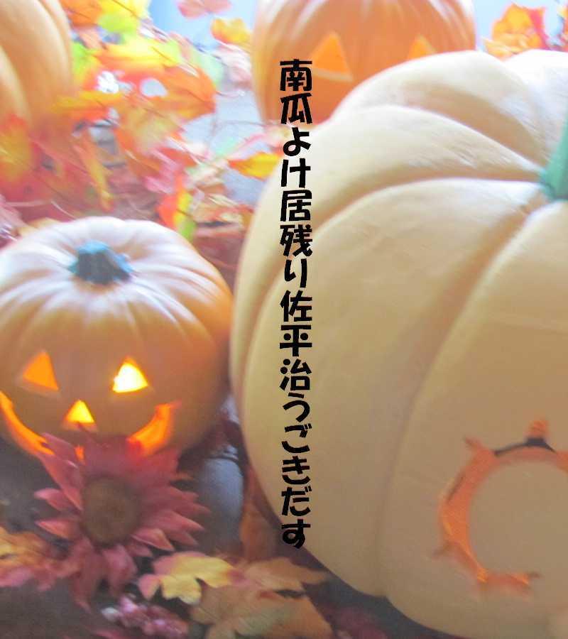 f0117041_06103672.jpg