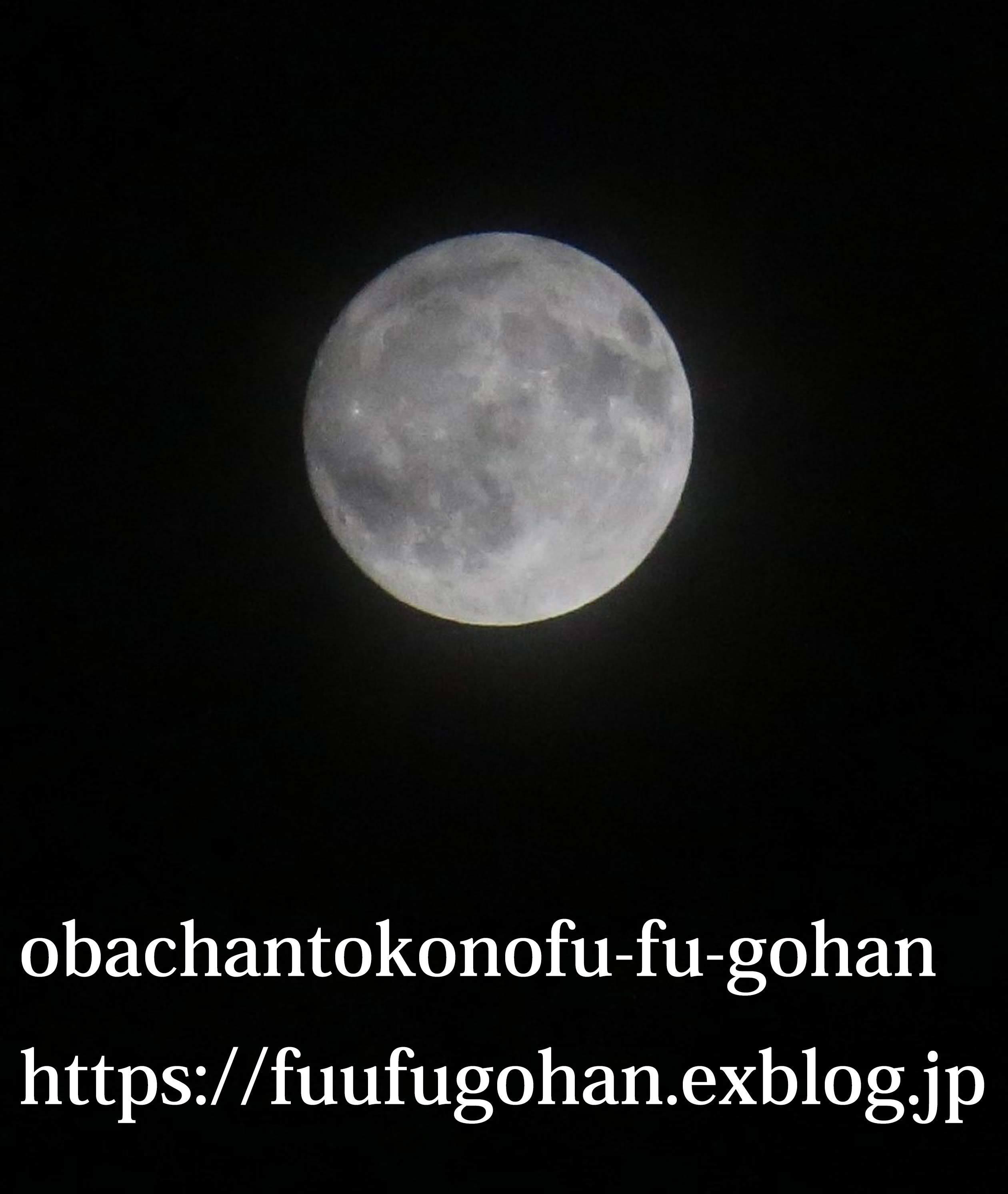 c0326245_10440850.jpg