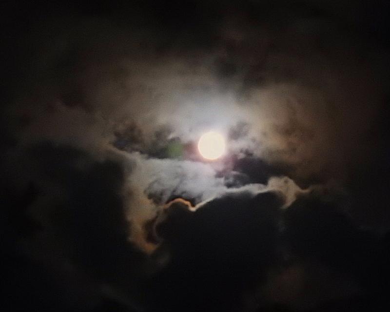 郷愁の里で ほかお月様も_c0305565_17510839.jpg