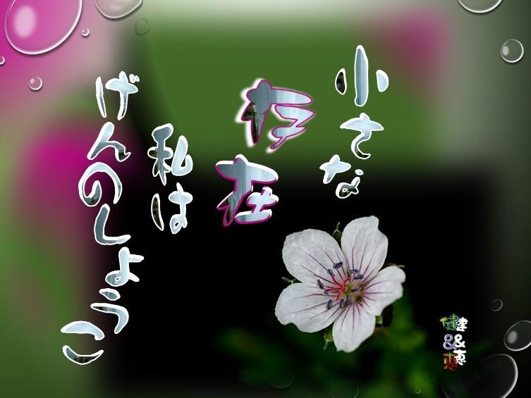 f0214467_09581078.jpg