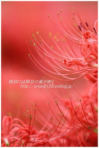 f0361079_18202382.jpg