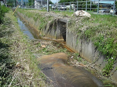 札幌の西縁を歩く(1)_f0078286_08555922.jpg