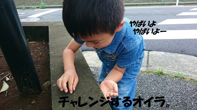 ★むつまじい★_d0187891_17155872.jpg
